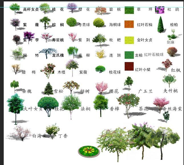 乔木,灌木类植物psd素材[原创]