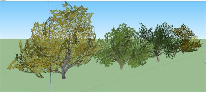 3D绿色植物树SU模型(2)