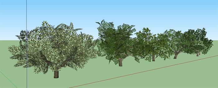 3D绿色植物树SU模型(3)