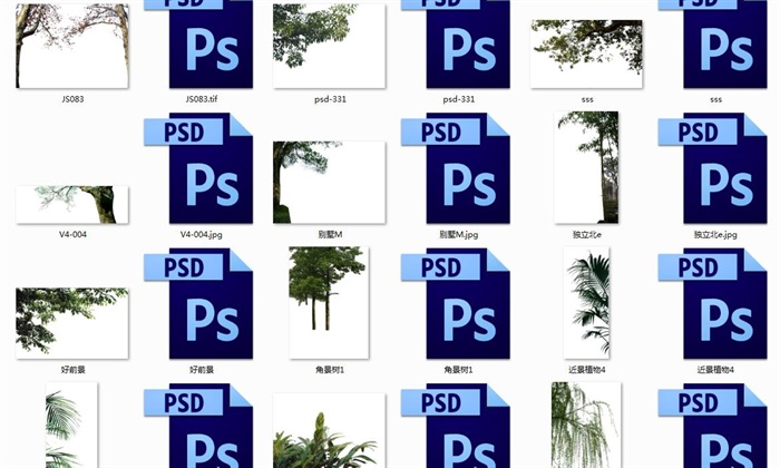 树木精品前景(2)