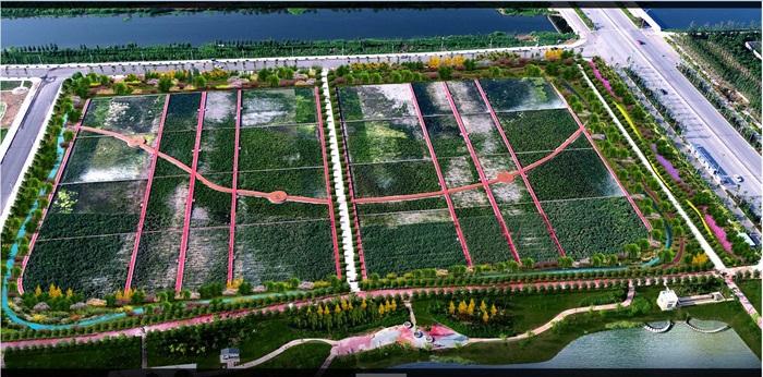 某湿地公园鸟瞰图PSD格式(1)