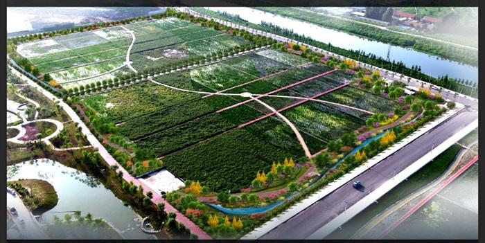 某湿地公园鸟瞰图PSD格式(3)