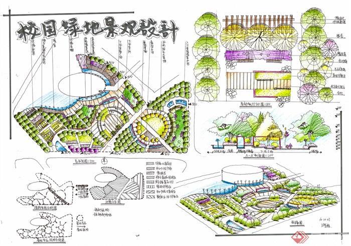 校园,校园景观,校园规划