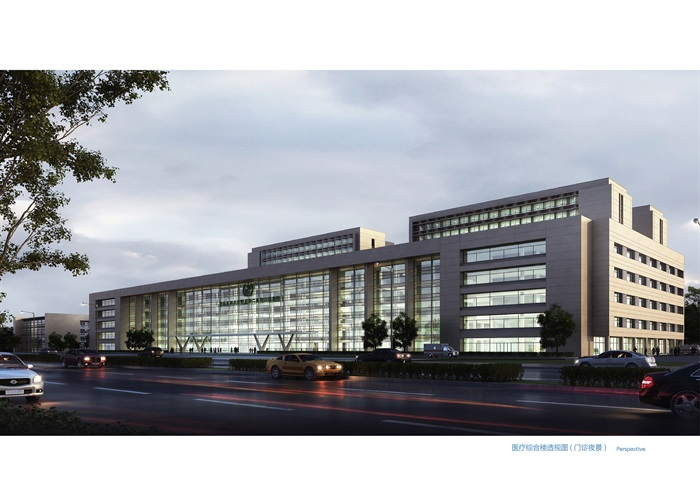 某大型医院规划及建筑方案设计(含文本、CAD)(2)