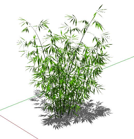 园林景观竹子植物素材设计su模型[原创]