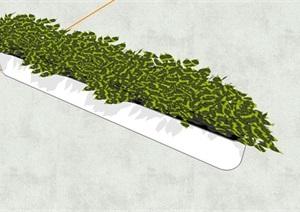 精致植物花盆SU(草图大师)模型
