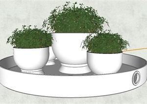 盆形植物盆栽SU(草图大师)模型