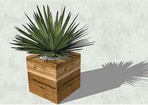 方形木盒植物盆栽模型