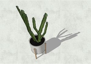 摆盆植物盆栽SU(草图大师)模型