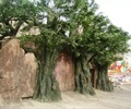 樹木,樹木素材,造型樹