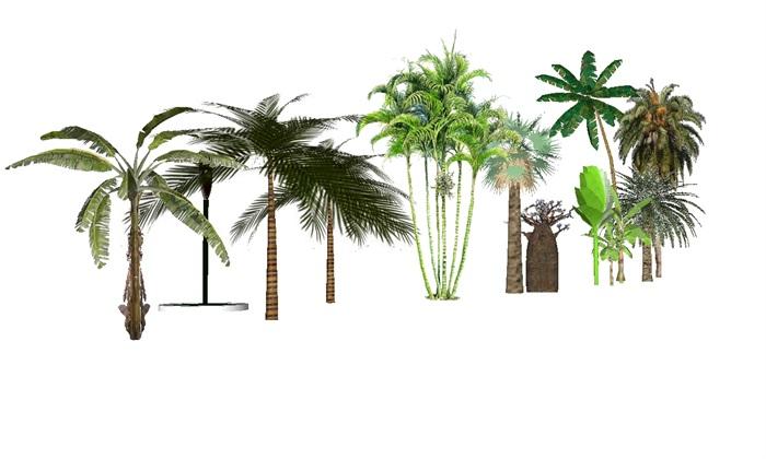 各种园林乔灌木地被植物素材大全su模型[原创]