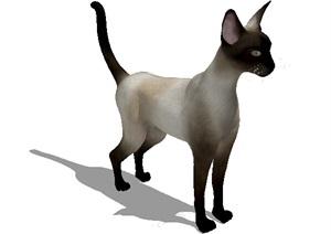动物小猫素材设计SU(草图大师)模型