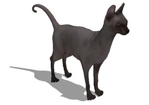 详细小猫素材设计SU(草图大师)模型