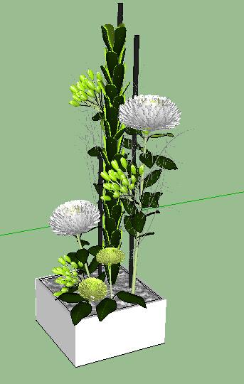 某室内景观植物装饰品素材设计su模型[原创]