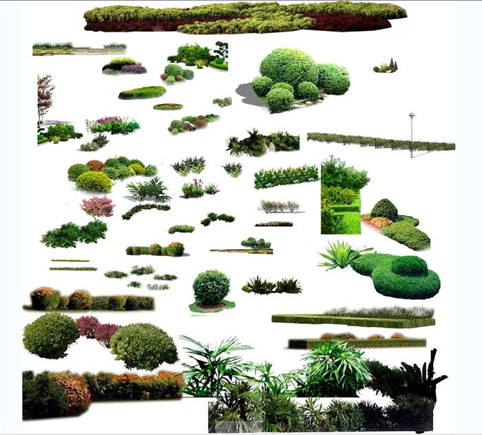 某植物素材设计psd素材(1)