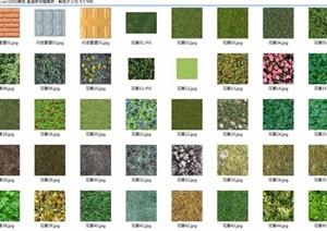 花草地盲道砖与植草砖jpg贴图