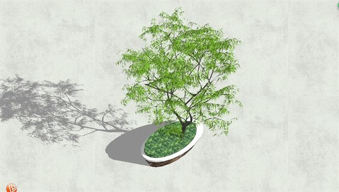 现代详细异形树池su模型[原创]