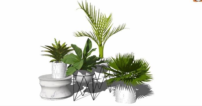 室内盆栽花架植物墙艺术花卉(3)