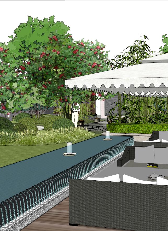 建筑屋顶绿化花园景观竹林(2)