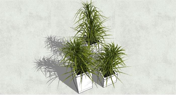 现代风格景观花钵盆景素材su模型[原创]