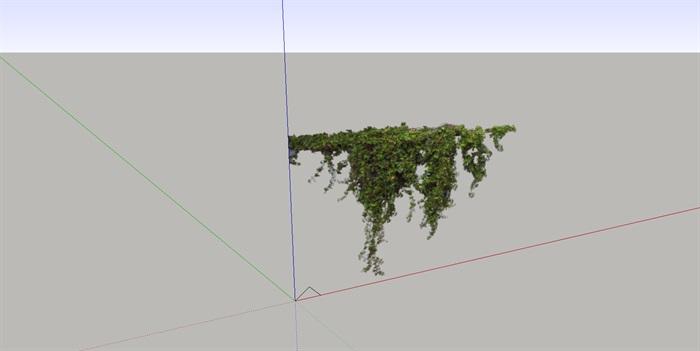 各种藤蔓植物素材设计su模型