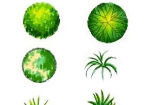 各类平面树图标汇总设计