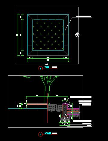 两种树池(2)