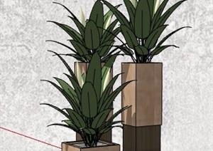 三株花卉盆栽组合植物SU(草图大师)模型