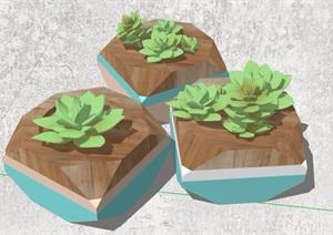 三株多肉植物素材SU(草图大师)模型