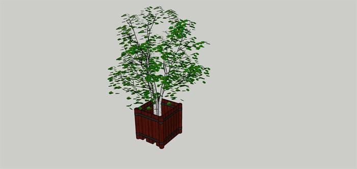 花盆植物外观方案设计su模型[草图大师模型,原创]