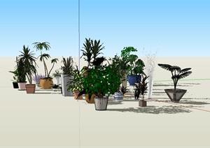 SU(草图大师)盆栽花盆植物详细模型设计
