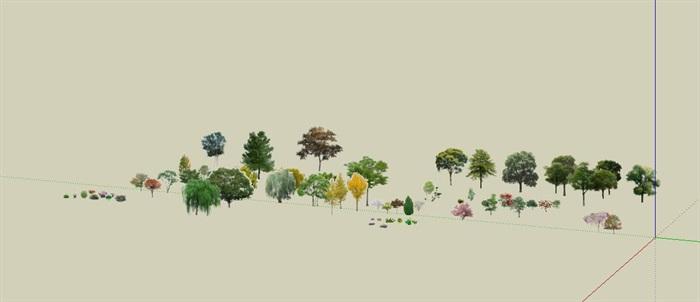 效果场景各种类型树详细SU模型(1)
