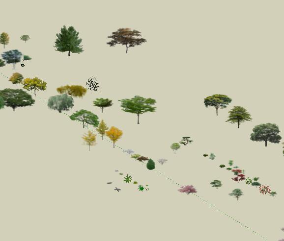 效果场景各种类型树详细SU模型(2)