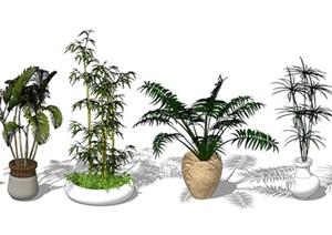 景观盆栽植物合集SU(草图大师)模型