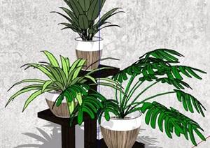四款盆栽植物SU(草图大师)精细模型