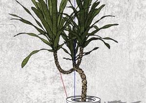 四株室内摆件盆栽植物SU(草图大师)模型