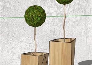 5款绿化景观植物盆栽素材SU(草图大师)模型