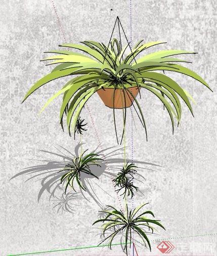 5组盆栽绿化植物素材su模型