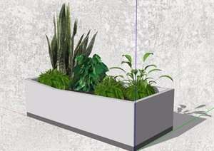 4款室内摆件盆栽植物SU(草图大师)模型