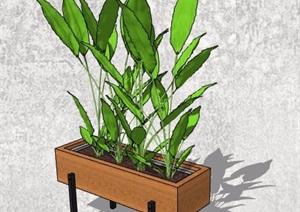 4款盆栽植物及植物架SU(草图大师)模型