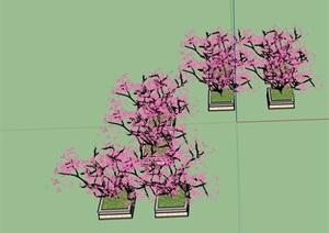 详细的完整树池素材SU(草图大师)模型