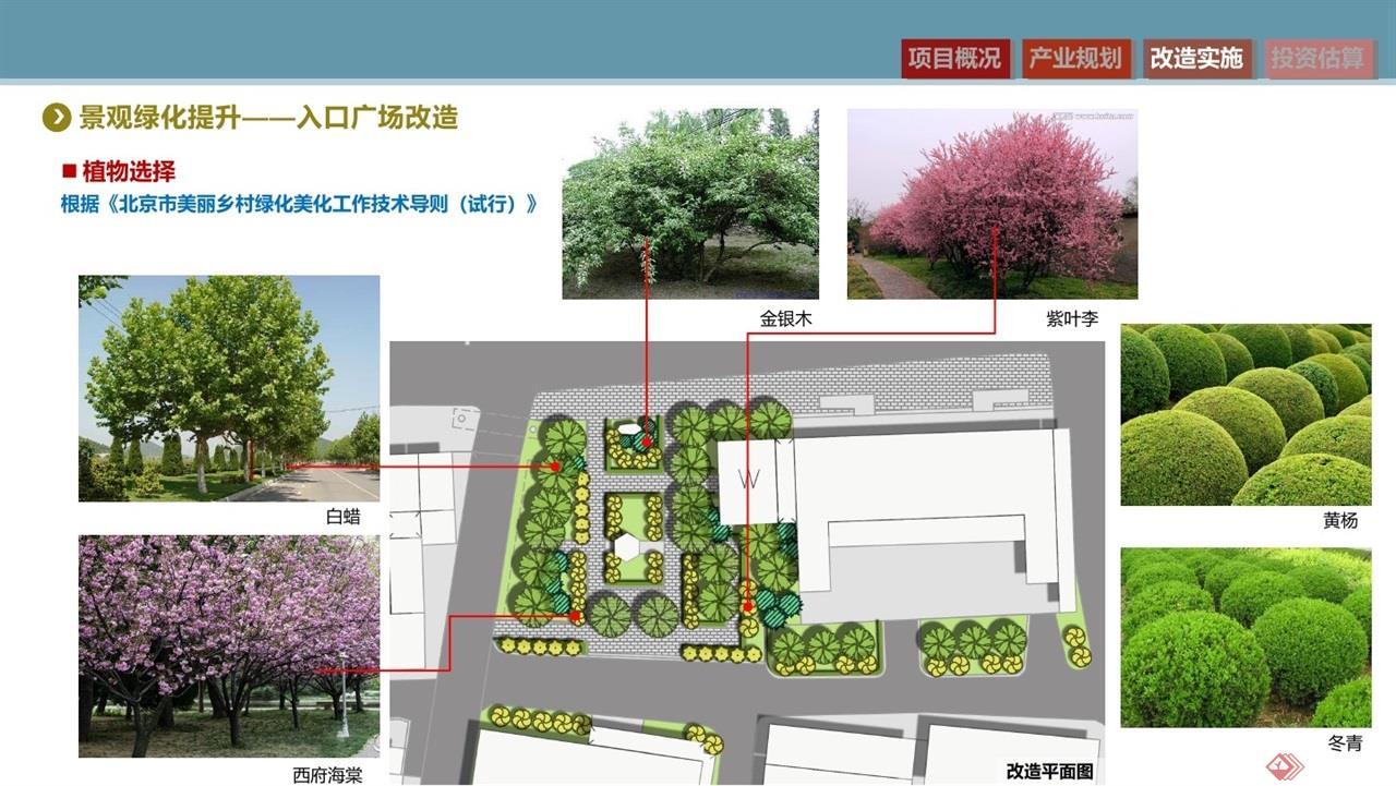 赵家场美丽乡村实施方案汇报2019-2-280045