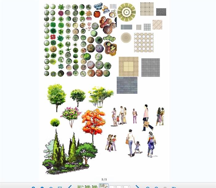 植物手绘平面立面景观psd素材(3)