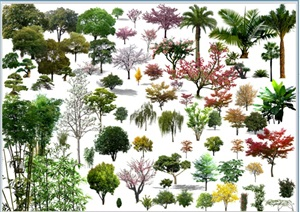 高清植物psd素材
