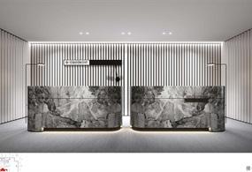 中海国际中心租赁中心设计