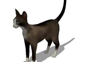 详细的小猫素材SU(草图大师)模型