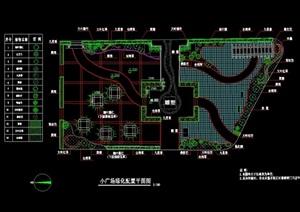 小广场绿化配置cad平面图