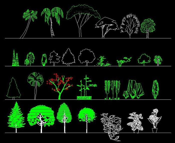 植物图例(3)